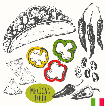 Vector illustration of ethnic cooking: tacos, nachos, beans, hot peppers. Main course, snacks and dessert. Illustration