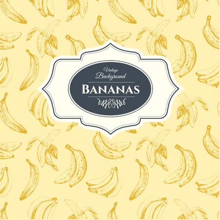 sliced fruit: Fruits vintage pattern. Hand-drawn sketch of bananas.