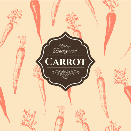 zanahorias: Los alimentos frescos orgánicos. Las zanahorias de fondo. Estilo vintage. Modelo anaranjado. Vectores