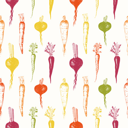 Fresh organic sketch food.  Root vegetables background.  Vintage style. Colorful pattern.