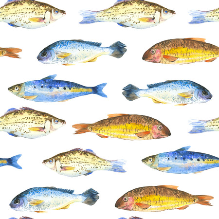 dorado: Hand-drawn painting pattern with seafood on a white background. Stock Photo