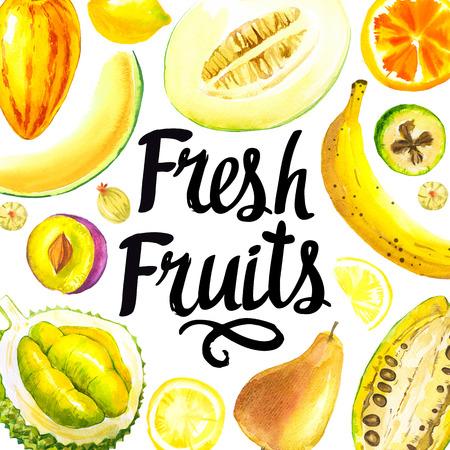 Durian: Đặt các loại trái cây khác nhau: chanh, lê, chuối, trái cây cacao và dưa. thực phẩm hữu cơ tươi.