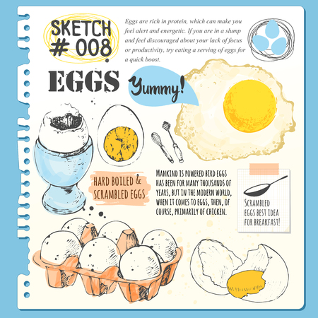Set of hand drawn organic food. Vector illustration with sketch of fresh, boiled and fried eggs. Black and white.