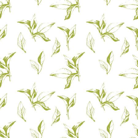 Vector groen en wit patroon. Bloemenpatroon. Groene patroon met theeblaadjes. Stock Illustratie
