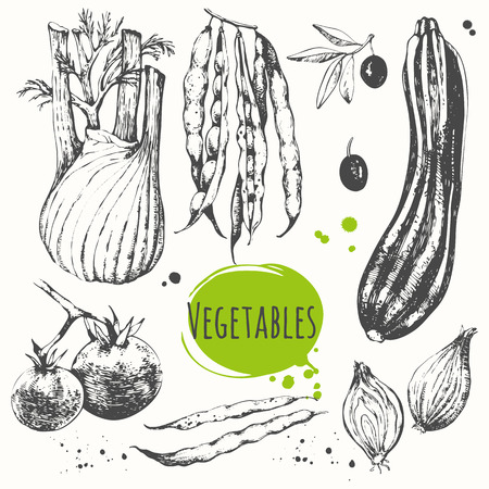 Vector illustration with sketch of mediterranean vegetable. Black and white sketch of food. Fresh organic food. Vettoriali