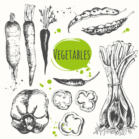 Fresh organic food. Vector illustration with sketch of mediterranean vegetable. Black and white sketch of food.
