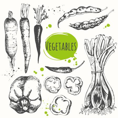 Verse biologische voeding. Vector illustratie met de schets van mediterrane groenten. Zwart-wit schets van voedsel. Stockfoto - 53456061