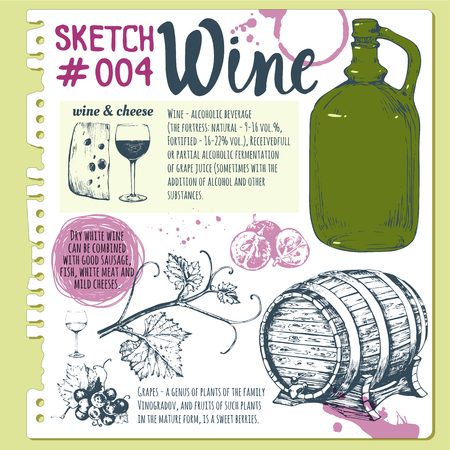 winemaking: Vector illustration with wine glass, wine barrel, old wine bottle, cheese, walnuts, olives. Classical alcoholic drink.