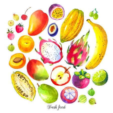 Set van verschillende vruchten: pruim, guave, kruisbes, abrikoos, passievrucht, dragon fruit, durian, mangosteen, mango, cacao fruit. Verse biologische voeding.