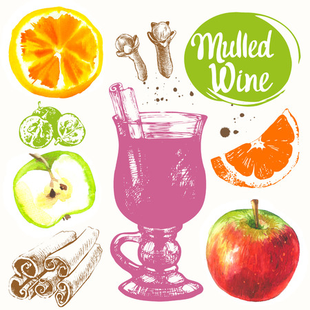 Sketch and watercolor illustration with mulled wine, cinnamon, grape, orange, apple.