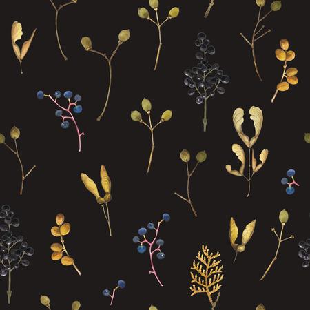 feuille arbre: Aquarelle érable réaliste, le frêne, le thuya, raisins sauvages. motif de la nature sur un fond noir. Banque d'images