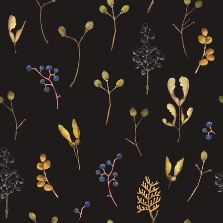 linden: Watercolor realistic maple, ash, arborvitae, wild grapes. Nature pattern on a black background.