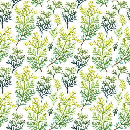 Natuurlijke patroon op een witte achtergrond. Watercolor realistische planten.
