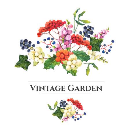 Motivo floreale naturale su uno sfondo bianco. Acquerello bacche realistici: snowberry, agrifoglio e uve selvatiche. Archivio Fotografico - 55495027