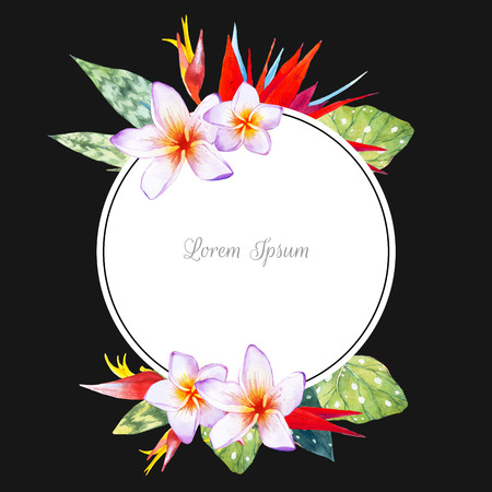 strelitzia: Floral illustration with tropical plants on black background. Composition with plumeria, strelitzia, palm and begonia leaves.