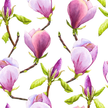 Spring seamless background with watercolor magnolia. Floral purple pattern with watercolor realistic flowers on white background for your design and decor.