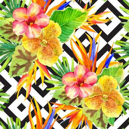 strelitzia: Seamless background with watercolor tropical flowers. Beautiful tropical plants on black and white background with geometric pattern. Composition with lily, strelitzia, palm and begonia leaves and orchid.