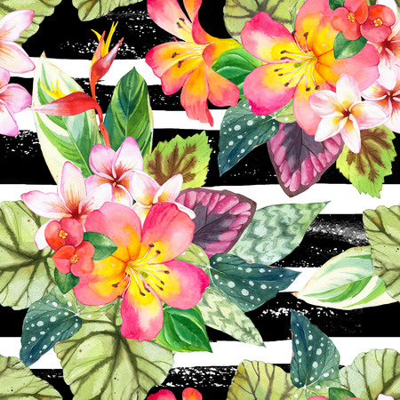 tropical plants: Beautiful pattern with tropical flowers and plants on a striped black and white background. Composition with palm leaves, plumeria, strelitzia and begonia leaves.