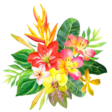 strelitzia: Beautiful bouquet with tropical flowers and plants on white background. Composition with amaryllis, palm leaves, plumeria, strelitzia and orchid.