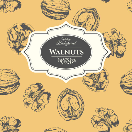 walnut: Fresh organic food. Vintage walnuts background. Black vector white nut pattern.