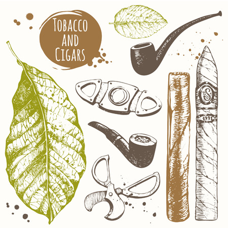 cigar smoke: Vector illustration with cigars, pipes, guillotines for cigars, leaf tobacco. Classical smoking set.