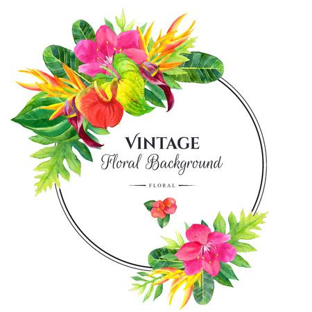 Ilustración floral con flores tropicales y plantas en el fondo blanco. Composición con hojas de palma, anturios y strelitzia. Marco redondo. Foto de archivo - 58754881