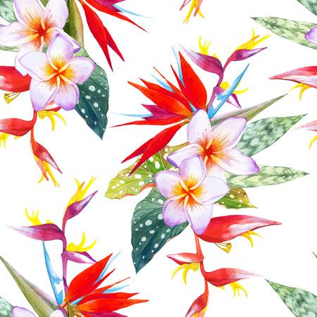 endlos: Schöner Blumenstrauß mit tropischen Pflanzen auf weißem Hintergrund. Komposition mit plumeria, Strelitzien, Palmen und Begonie Blätter. Lizenzfreie Bilder