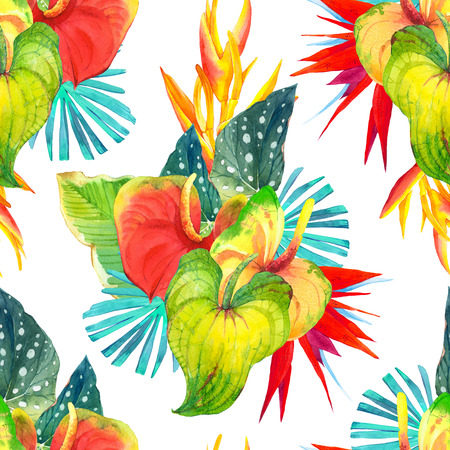 strelitzia: Beautiful pattern with begonia leaves, anthurium and strelitzia on white background. Stock Photo