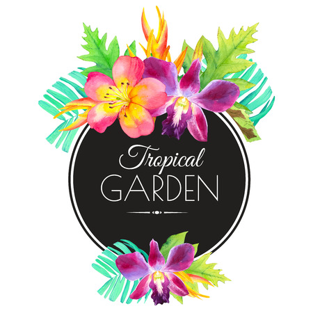 tropical flower: Beautiful bouquet with tropical plants on white background. Composition with lily, palm leaves, strelitzia and orchid.