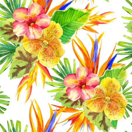 tropical plants: Beautiful tropical plants on white background. Composition with lily, strelitzia, palm and begonia leaves and orchid.