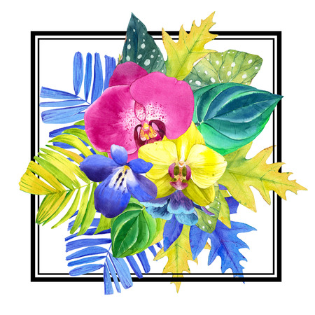 tropical flowers: Bouquet with tropical plants on white background. Yellow and pink orchid, begonia and palm leaves, blue flowers. Stock Photo