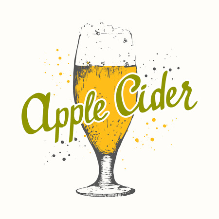 Drink menu. Vector illustration with glass of cider. Glass of cider in sketch style for pub menu. Vector illustration with alcoholic beverages. Cider labels.