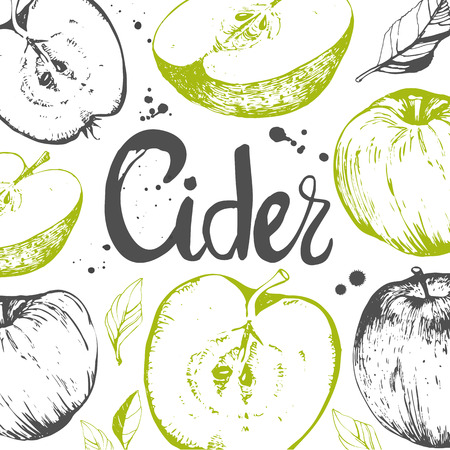 Vector hand-drawn sketch of apple. Fresh organic food. Fruit pattern with apple.