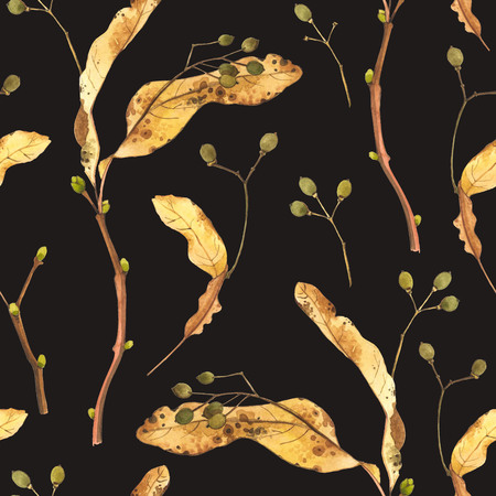 berries: Natural pattern on a black background. Watercolor realistic plants.