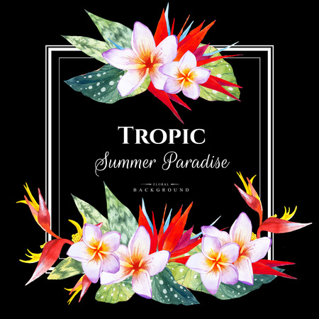 Floral illustration with tropical plants on black background. Composition with plumeria, strelitzia, palm and begonia leaves. Square frame. Stock Photo