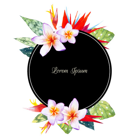 exotic flowers: Floral illustration with tropical plants on white background. Composition with plumeria, strelitzia, palm and begonia leaves. Stock Photo
