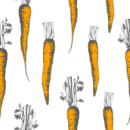 root vegetables: Fresh organic food. Carrots background. Vintage style. Orange pattern.