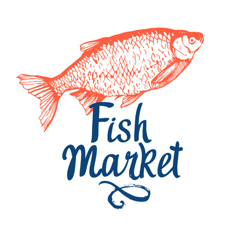 rudd: Hand drawn vector illustration with rudd fish. Market. Seafood menu. Brush design elements. Handwritten ink lettering. Illustration