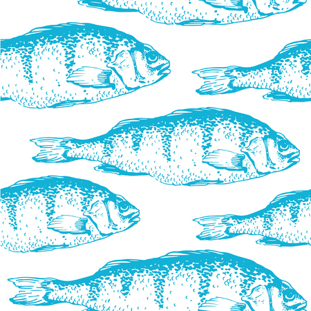 carp fish: Vector illustration with sketches of carp fish. Hand-drawn seamless background blue color. Illustration