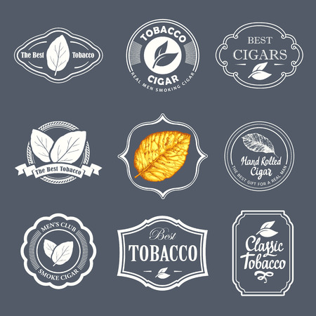 Vector Illustration with logo and labels. Simple symbols tobacco, cigar. Traditions of smokeke. Decorative elements, icon for your design. Gentleman style. Reklamní fotografie - 68194783