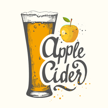 Drink menu. Vector illustration with cider apple glass in sketch style for pub. Alcoholic beverages.
