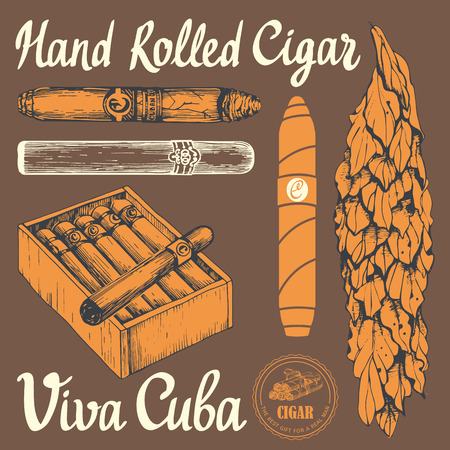 classical style: Vector illustration with classical smokeking set. Bunch of tobacco box, hand rolled cigars, leaf in sketch style. Best cuban quality.