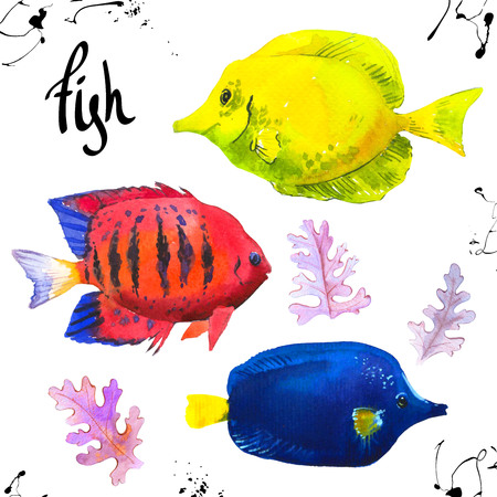 Set of tropical marine fish. Watercolor illustration with hand drawn aquarium exotic fish on white background. Imagens