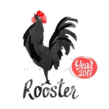 Silhouette of the cock. Sketch style. Watercolor illustration with black and white roosters. Brush drawings. Chinese New Year 2017.