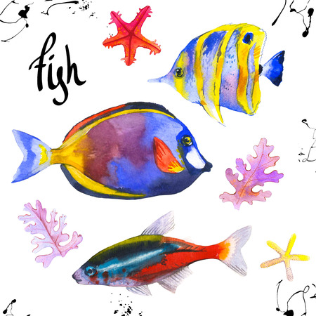 Set of tropical marine fish. Watercolor illustration with hand drawn aquarium exotic fish on white background. Stock fotó