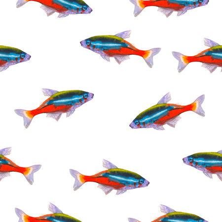 Seamless pattern with tropical neon tetra. Watercolor illustration with hand drawn aquarium exotic fish on white background. Banco de Imagens - 85542726