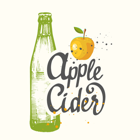 Drink menu. Vector illustration with cider apple bottle in sketch style for pub. Alcoholic beverages.