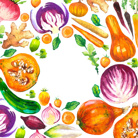 Watercolor illustration with round composition of farm illustrations. Vegetables set: pumpkin, zucchini, onion, tomato, cabbage, broccoli, beets, carrots, ginger, plum. Fresh organic food. 版權商用圖片