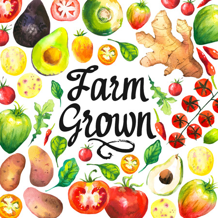 peasant: Watercolor illustration with round composition of farm vegetables. Set of different vegetables: tomato, potato, avocado, ginger, pepper, turnips, arugula, spinach. Fresh organic food. Stock Photo