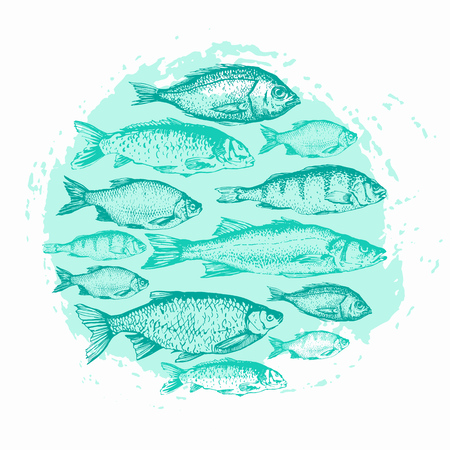 Vector illustration with sketches of fish. Round composition. Hand drawn fish. Blue design. Fish Market. Poster for seafood menu. Ilustrace